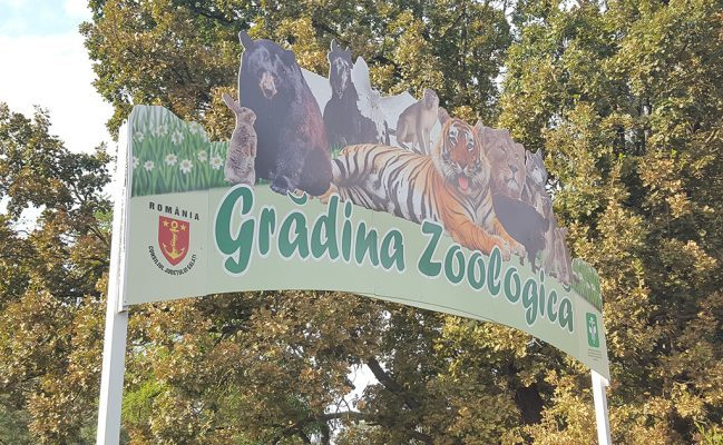 gradina zoologica galati