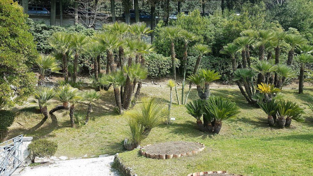 vila monastero varenna garden
