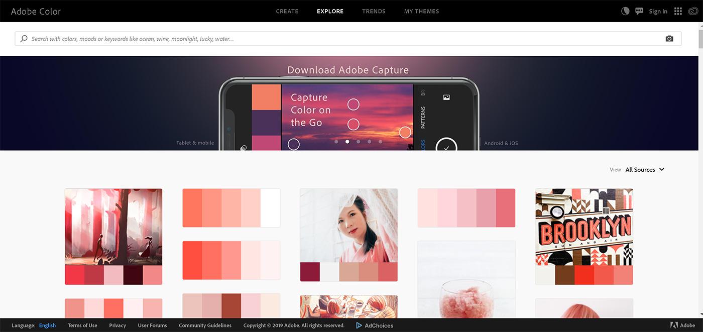 paleta culori adobe